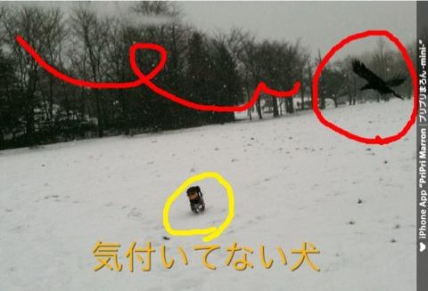IMG_6449.jpg