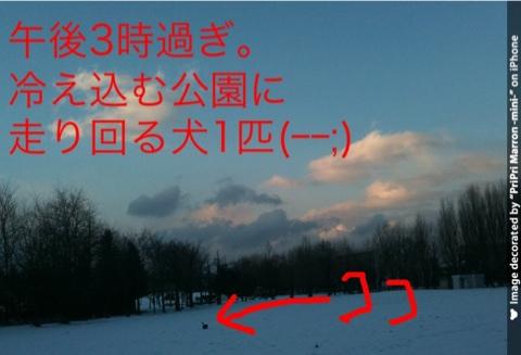 IMG_6496.jpg