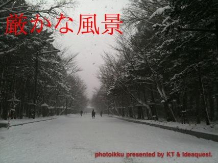 IMG_7067.jpg