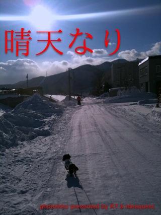 IMG_7448_20110110234824.jpg