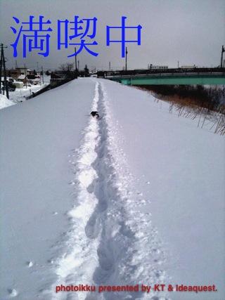 IMG_7562.jpg