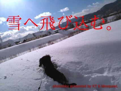 IMG_7745_20110114023625.jpg