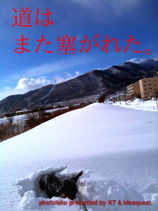 IMG_7746.jpg