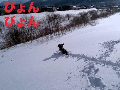 IMG_8136.jpg