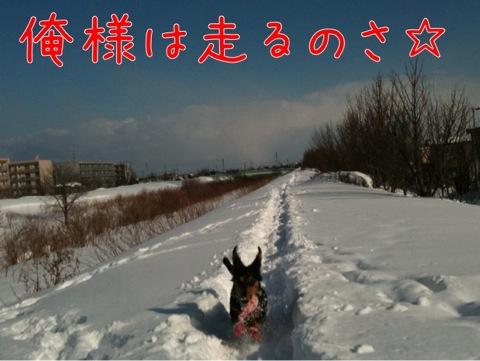 IMG_8444.jpg