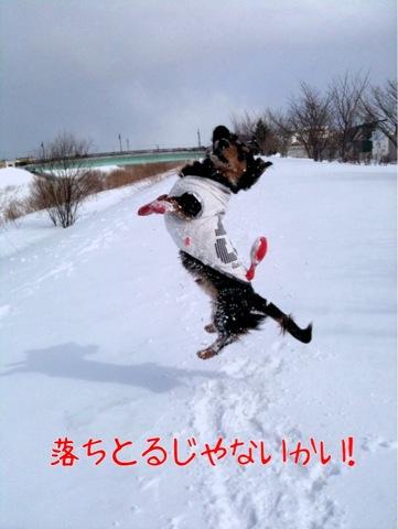 IMG_9929.jpg