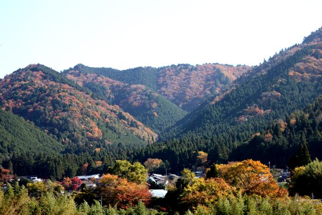 ohara-s10-3694x.jpg