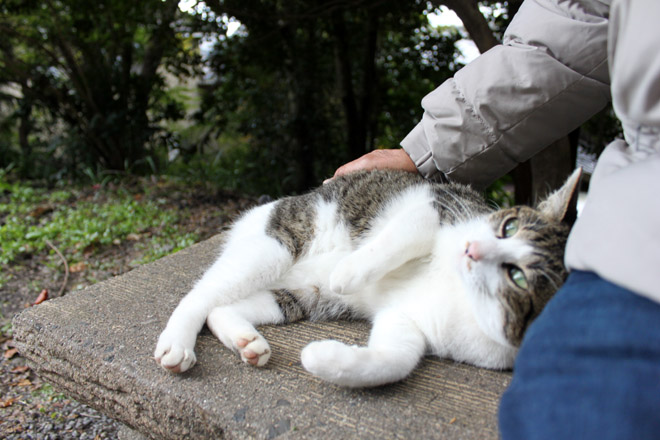 tetsugaku-s10-9916.jpg