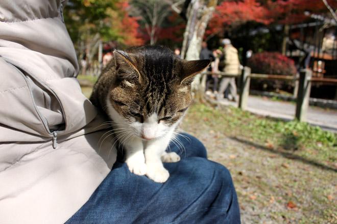tetsugaku-s10-9946.jpg