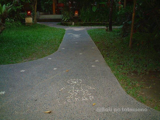 2004_1209_191105AA.jpg
