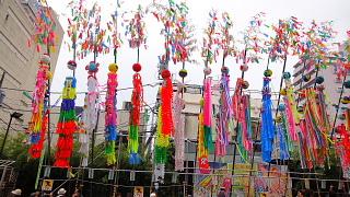 平塚七夕祭り2