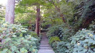 瑞泉寺階段