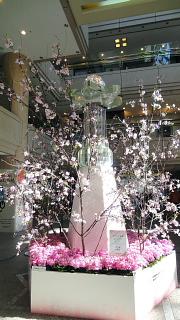 クリスタル桜