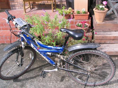 bycicle_convert_20101025111813.jpg