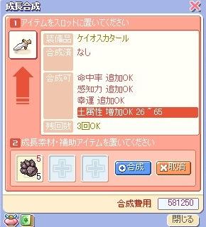 ss10110404.jpg