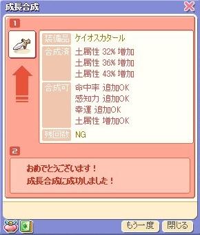ss10110405.jpg