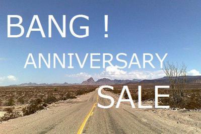 anniversary saale-2