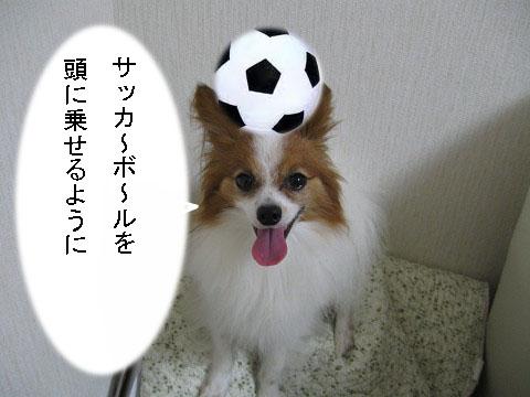 うみうし2
