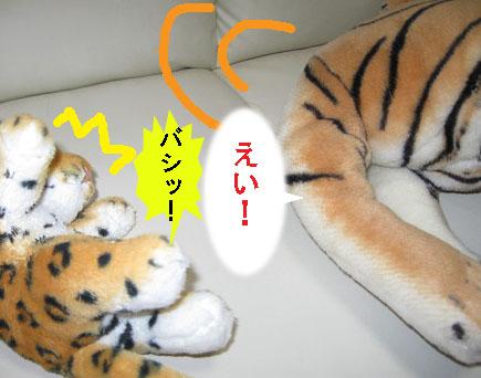 とらぼ11