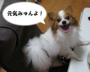 びょ2_edited-1