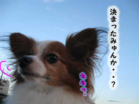 きんよ7_edited-1
