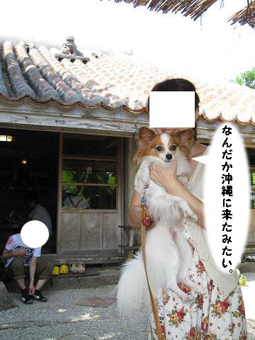 sすば8_edited-1