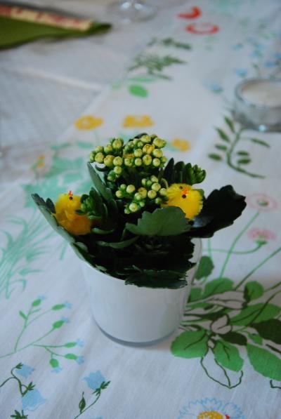 ひよこつきの花