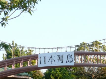 036_20111121211432.jpg