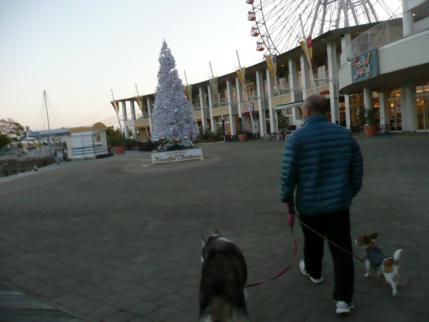 052_20111125064630.jpg