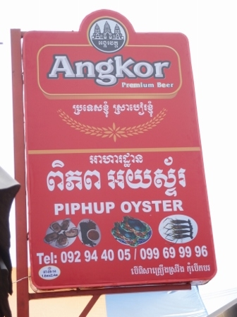 Piphup Oyster 1
