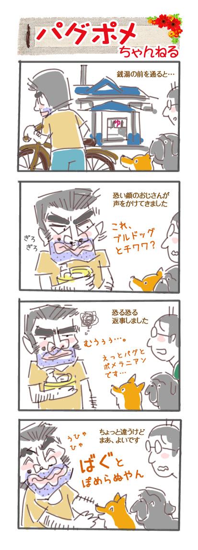 pugpome_041