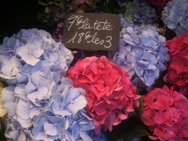 2012 Sep France 041