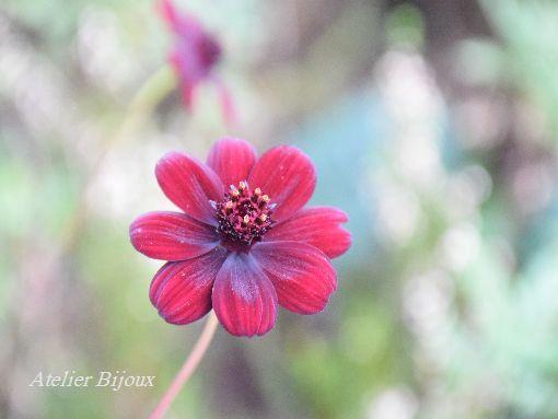 001-花