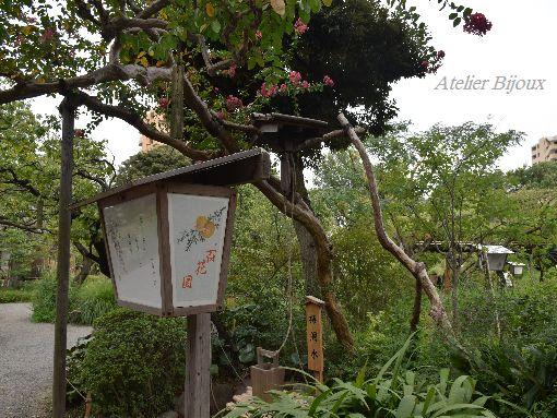 050-百花園