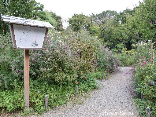 079-百花園