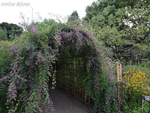 097-萩のトンネル
