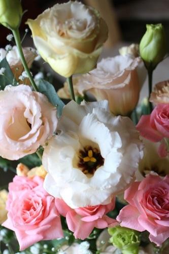 flowers-20140105.jpg