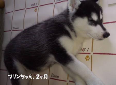 20111011_2.jpg