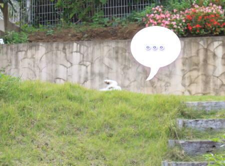20111013_5.jpg