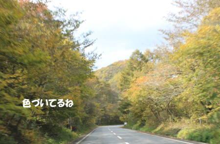 20111023_7.jpg