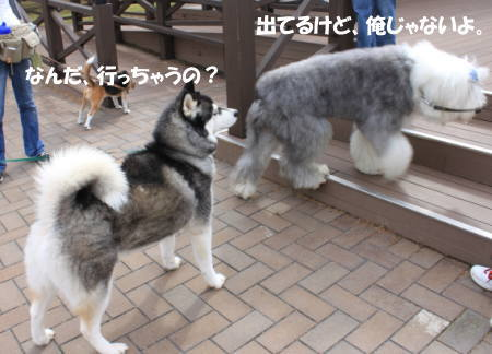 20111023_8.jpg