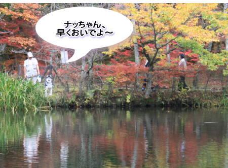 20111024_5.jpg