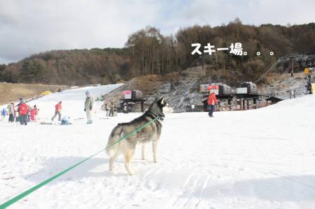 20111224_15.jpg