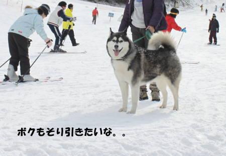 20111224_16.jpg