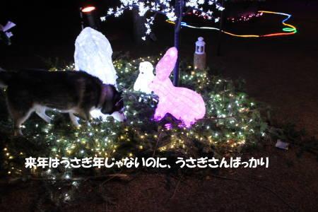 20111224_7.jpg