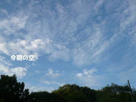 201200807_1.jpg