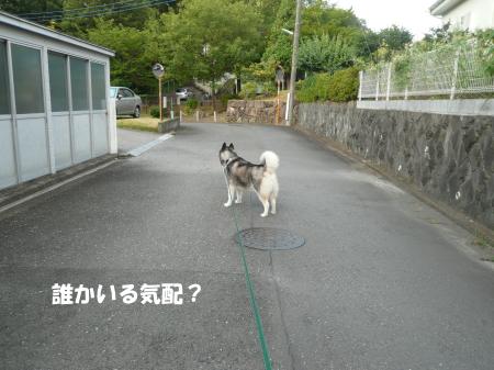 201200807_2.jpg