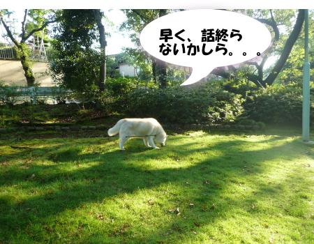 201200807_8.jpg