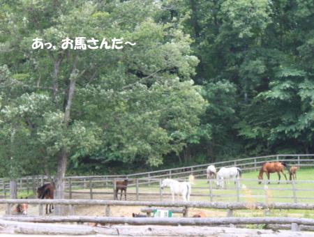201200813_13.jpg