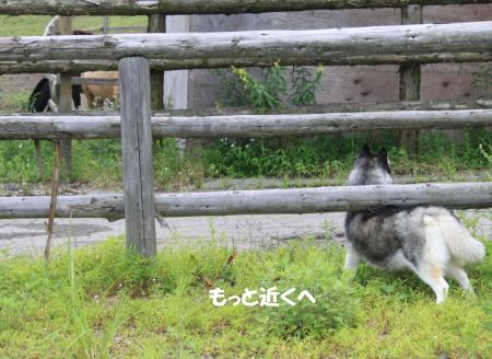 201200813_16.jpg